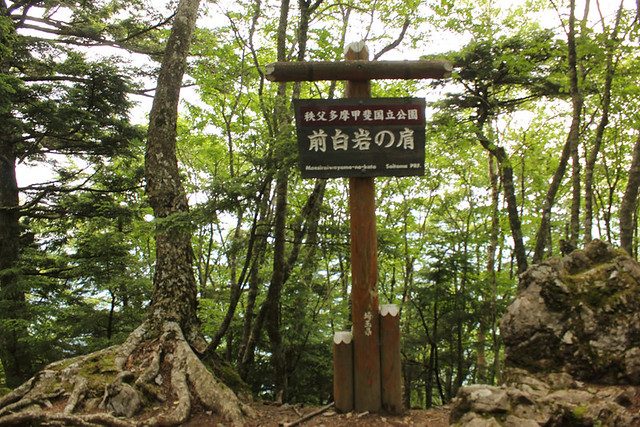 雲取山_38