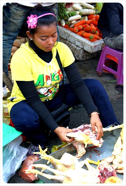 phnom penh market chicken vendor