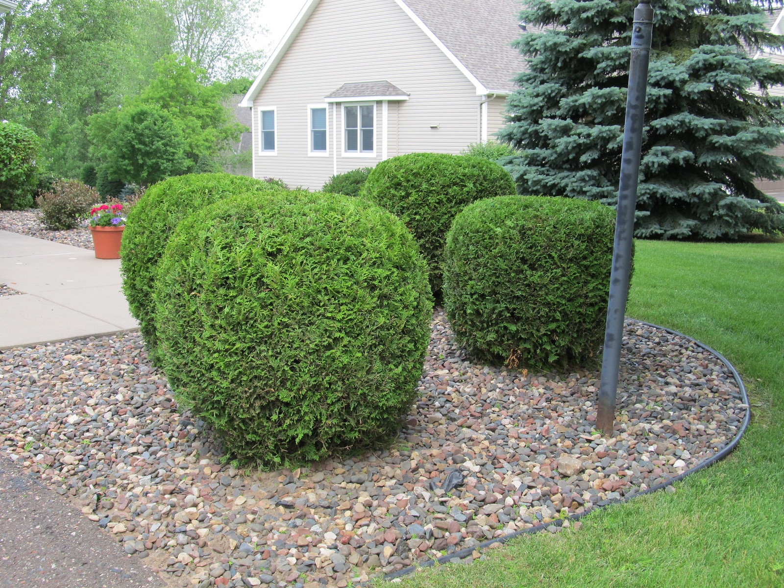 7664623974 4c2c62b1c4 for Front yard plants