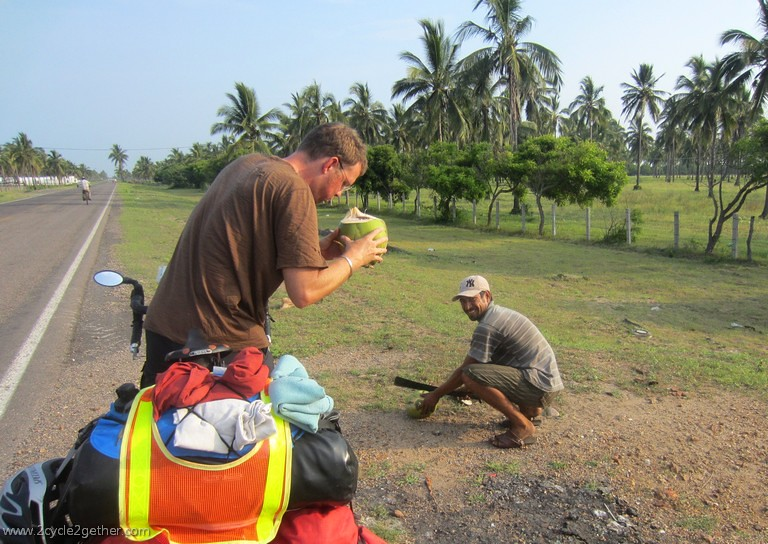 Given a fresh, green coconut as a gift from a man harvesting.
