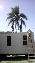 Trailer Roof Installation