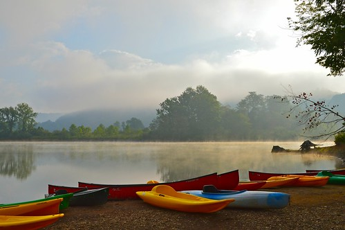 morning trees mist lake beach water fog sunrise landscape dawn boat pond kayak day cloudy paddle canoe shore