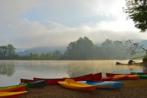 morning trees mist lake beach water fog sunrise landscape dawn boat pond kayak day cloudy paddle canoe shore