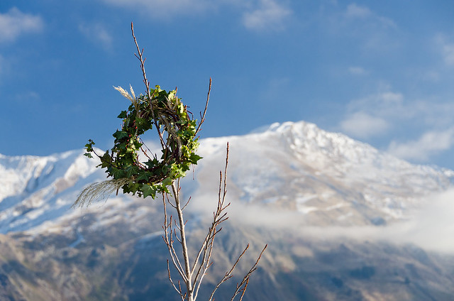 A laurel wreath in the middle of nowhere
