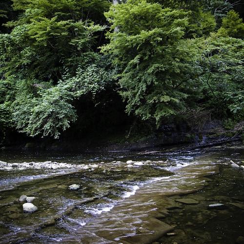 Le Petit Rapids, Yorokeikoku, Chiba, Japan