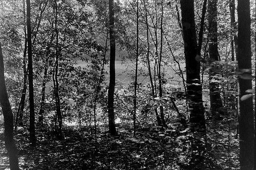 bessar lexingtonnc finchpark aristaedu100film j8502lens rodinal11008mins exposedie50