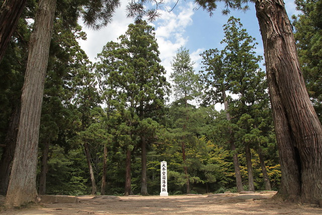 毛越寺の画像 p1_6
