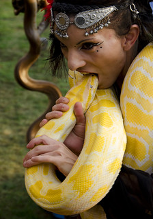 Woman trying to bite a Burmese Python during the snakeshow