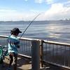 甥っ子と釣り、しかし釣れず\(^o^)/ by tackan93