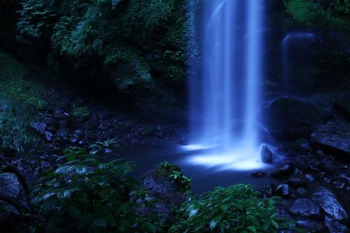 無料写真素材, 自然風景, 森林, 滝, 風景  日本