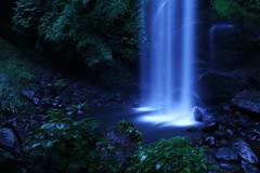 [フリー画像素材] 自然風景, 森林, 滝, 風景 - 日本 ID:201209210600