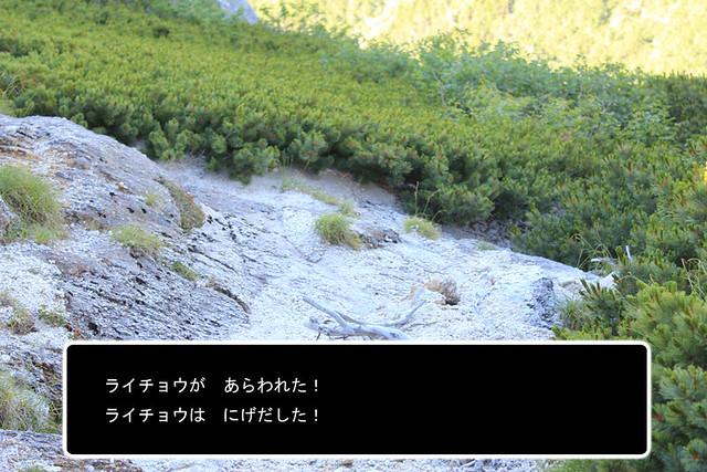甲斐駒ヶ岳_28