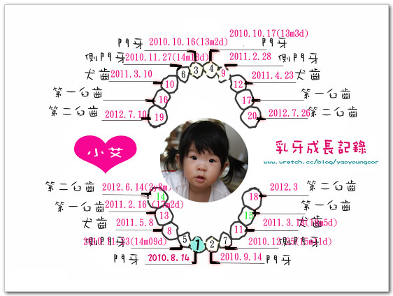 乳牙-evolet-3Y