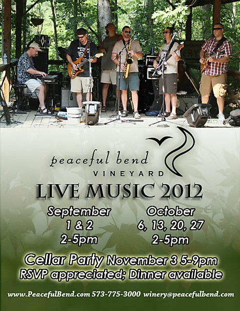 2012-music-flyer