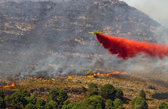 Incendio Sierra Tejeda (Canillas de Aceituno-Sedella)