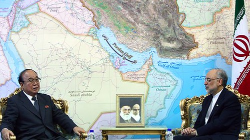 Democratic People's Republic of Korea foreign minister Pak Ui-Chun meets with his Iranian counterpart Ali Akbar Salehi. Both states are under constant attack by US imperialism. by Pan-African News Wire File Photos