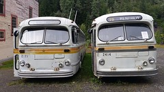old trolley buses of Sandon