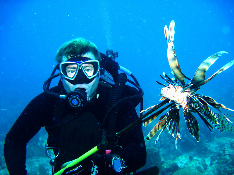 Lionfish Spear fishing