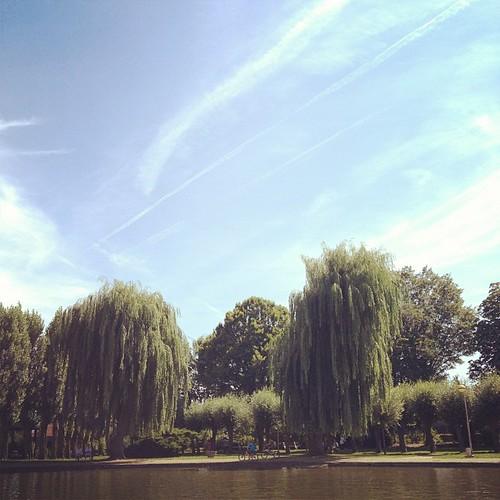 #tongeren #belgium #pond