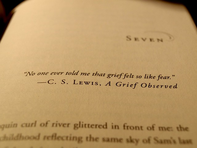 C S Lewis Hardship Quote With Picture: Flickr - Photo Sharing