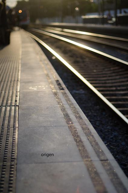 310/366: origen