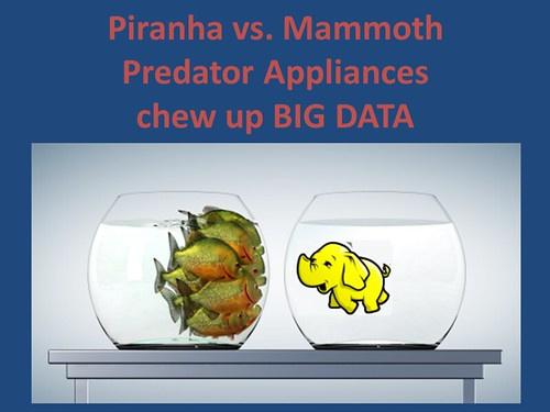 Piranha vs. Mammoth - Predator Appliances that chew up Big Data