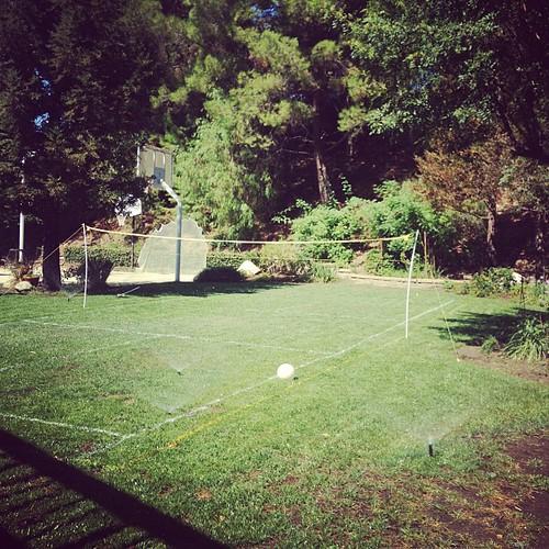Badminton in backyard. #veryofficial