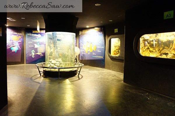 Singora Tram Tour - songkhla aquarium thailand-001