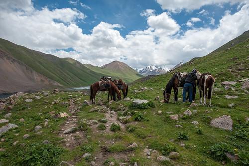 kyrgyzstan kolukok көлүкөк