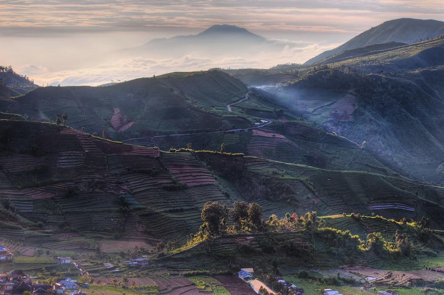 Dieng hills at sunrise