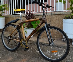 Ghana's bamboo frames for bicycles are being exported to Austria. Credit: Portia Crowe/IPS