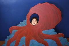 red(1.0), octopus(1.0), invertebrate(1.0), marine invertebrates(1.0), illustration(1.0), blue(1.0), organ(1.0),