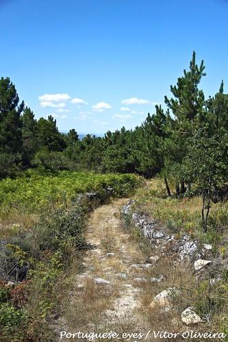 Estrada Romana da Aldeia de Nacomba - Portugal