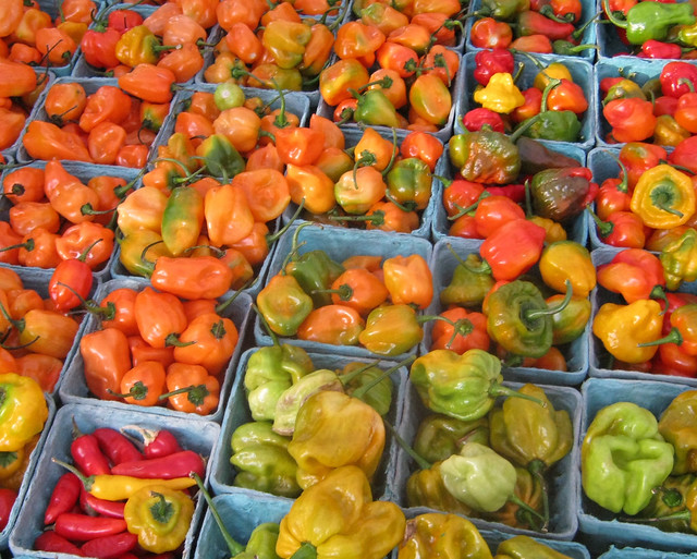 Fresh local produce at BBG's Chile Pepper Farm Stand. Photo courtesy of East New York Farms!