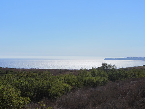point dume in the distance