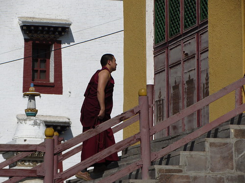 monk heads to school