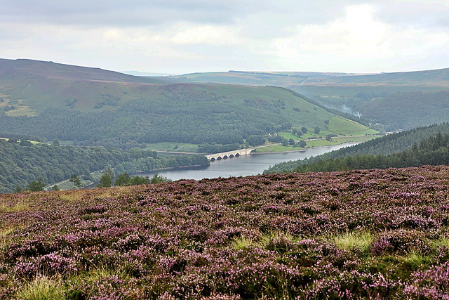 View to ladybower resevoir, a lake in the peak district
