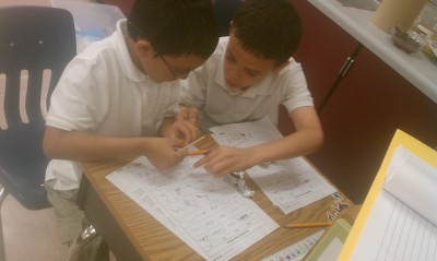 students work on life cycle project 3