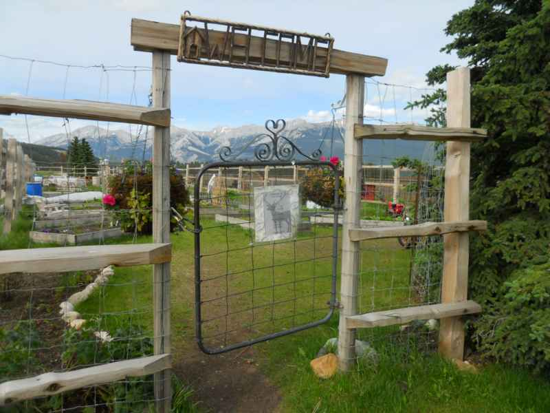 Jasper Community Garden Canada 26