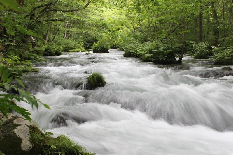 奥入瀬渓流 その3