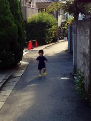 朝散歩 (2012/9/7)