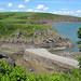 Pembrokeshire coastline (Barry Oxley)