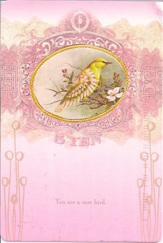 You Are a Rare Bird PaPaYa Card