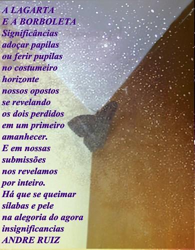 A LAGARTA E A BORBOLETA by amigos do poeta