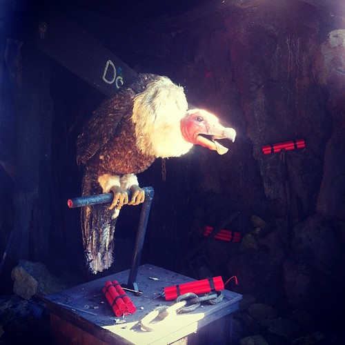 Animatronic talking buzzard tells lousy jokes.