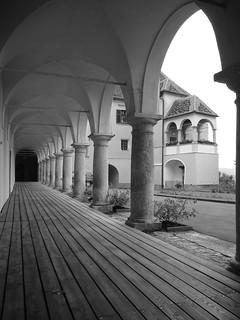 Abundance of arches