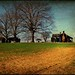Lancaster Farm:  Edgecombe County, North Carolina