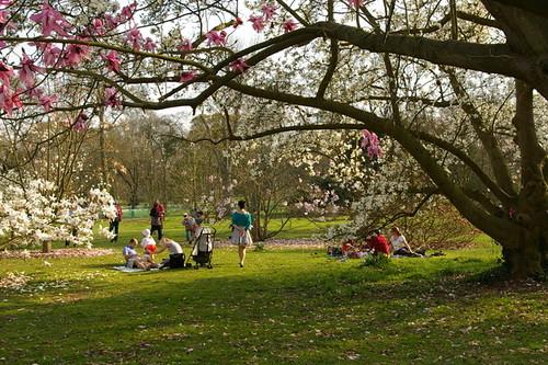Kew_Gardens-018