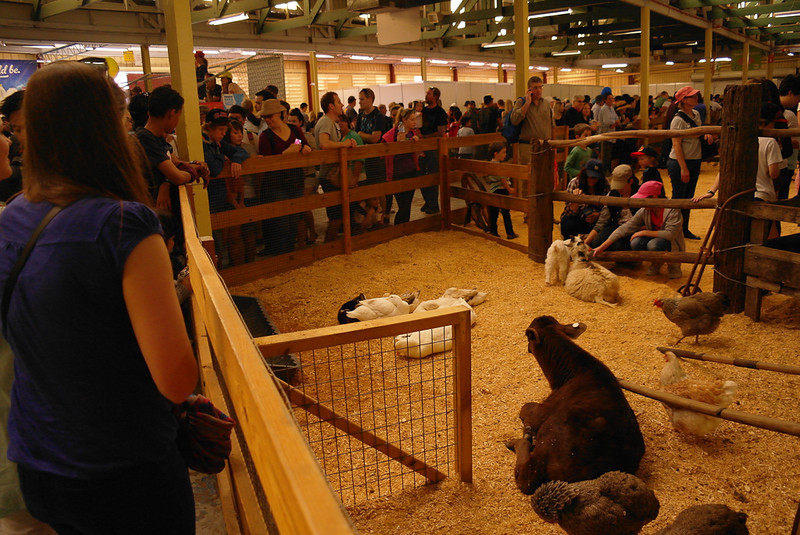 EKKA Showgrounds, Brisbane