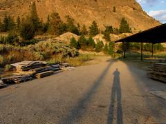 My Long Shadow